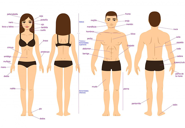 Características físicas e de personalidade das pessoas