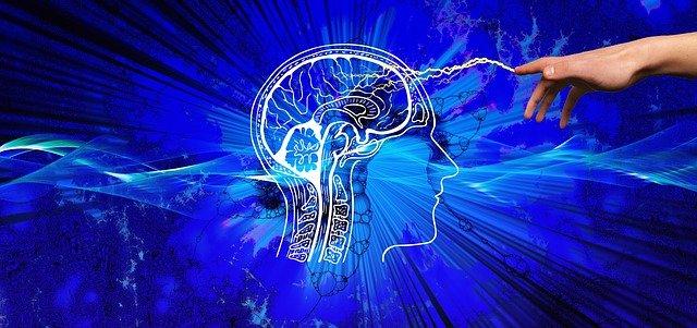 Fundamentos da psicologia