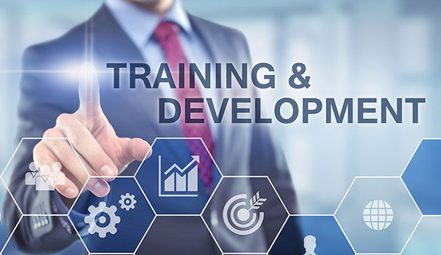 Os propósitos do treinamento
