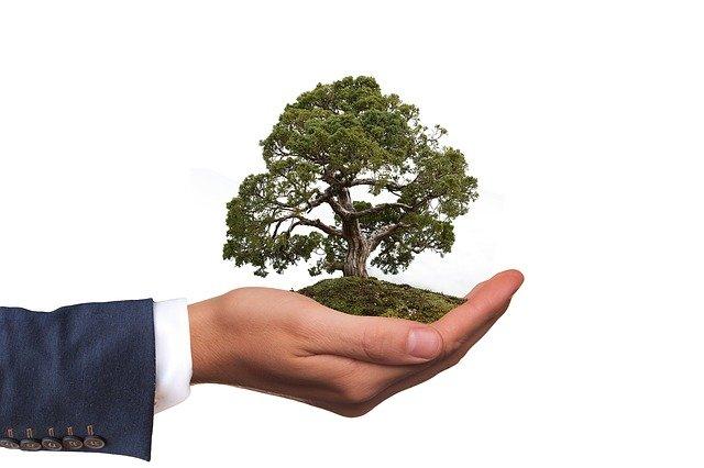 Fundamentos Básicos da Gestão Ambiental