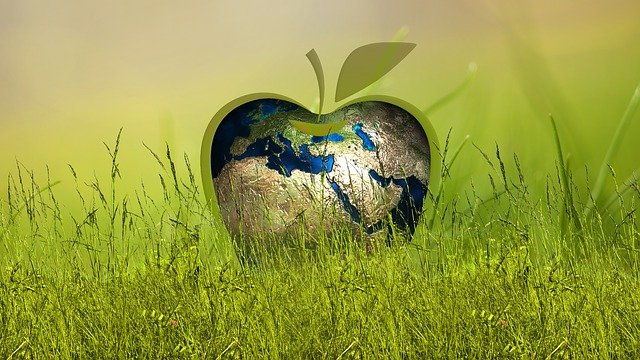 A sustentabilidade através da reciclagem