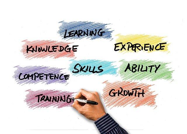 Por que é importante fazer treinamentos internos na minha empresa?